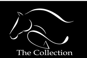 TheCollectionGraphic logo