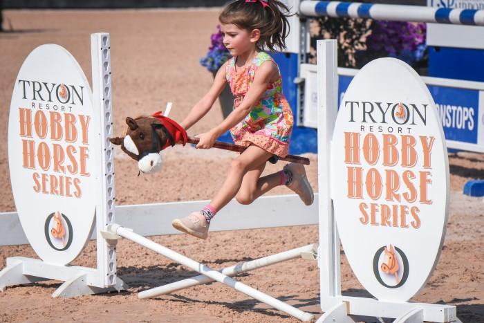 hobbyhorse1-700x467